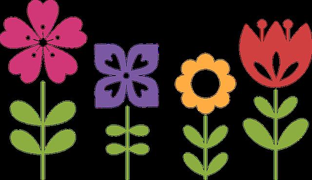 京都府立植物園,再開発,計画案