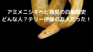 アミメニシキヘビ,白輪剛史,どんな人